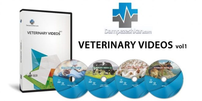 veterinary-videos