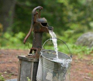 مقدار و کیفیت آب مصرفی طیور در مرغداری