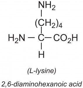 عوارض مصرف بیش از حد اسید آمینه لیزین