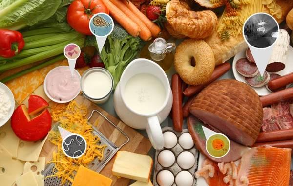 آلودگی شیمیایی دامی مواد غذایی