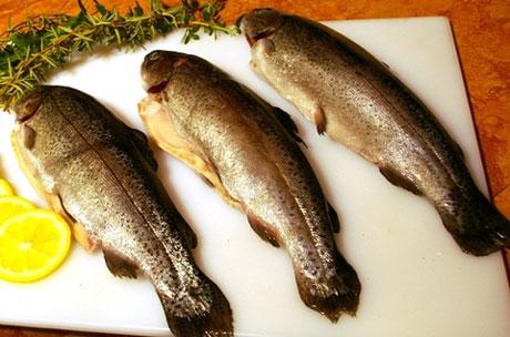 نکاتی در مورد بهداشتی ماهی