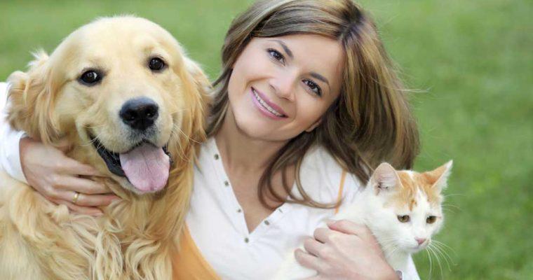بیماری لیم در حیوانات خانگی