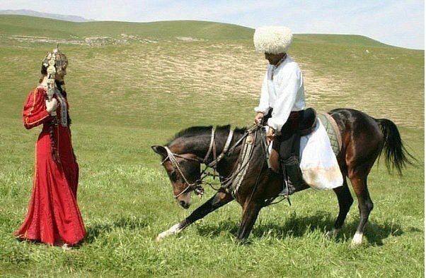 آشنایی با اسبهای نژاد ترکمن