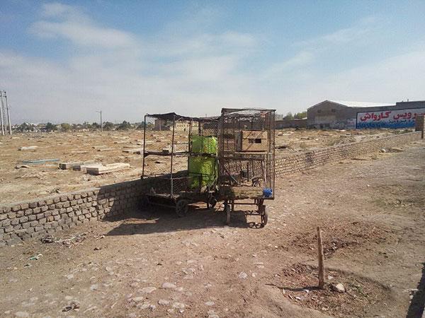 جمعه بازار پرندگان قوچان با دستور دادستان عمومی و انقلاب تعطیل شد