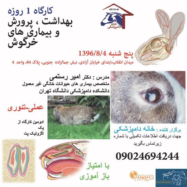 کارگاه آموزشی بهداشت، پرورش و بیماریهای خرگوش در تهران