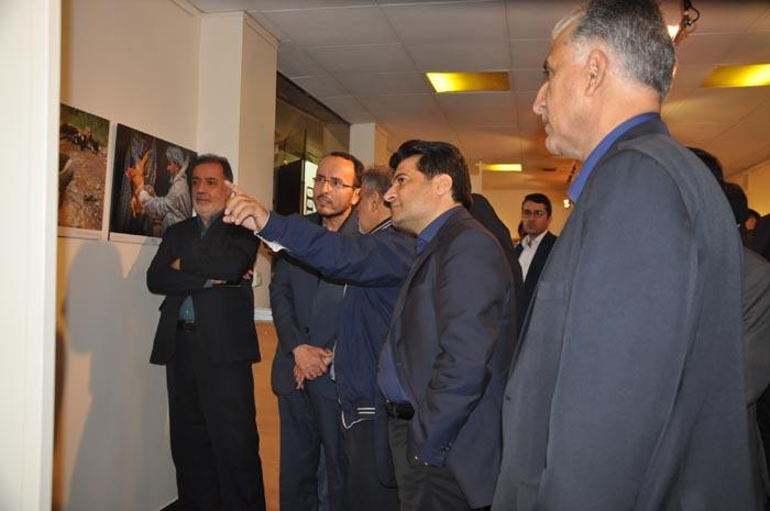 گزارش تصویری از مراسم افتتاح جشنواره فیلم و عکس بیطار در فرهنگسرای شفق