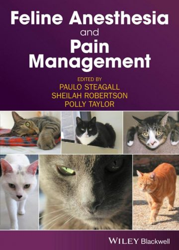 Feline-Anesthesia-and-Pain-Management